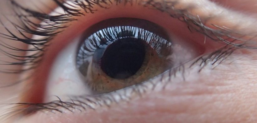 occhio castano, retina