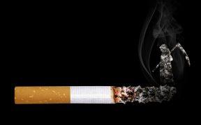 sigaretta, fumo, tabacco, morte